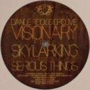 Visionary - Skylarking
