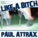 Paul Attrax - Like A Bitch (Niels Van Gogh Remix)