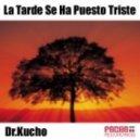 Dr. Kucho!, Adonis Alvarez Ft. Marta Bolanos - La Tarde Se Ha Puesto Triste (Disc Doctor Mix)
