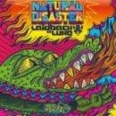Laidback Luke - Natural Disaster (Instrumental Extended Mix)