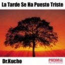 Dr. Kucho! - La Tarde Se Ha Puesto Triste (Vahid & Parsa Mix)