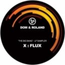 Dom & Roland - Flux