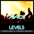 Avicii - Levels (TonyLink & Tigrov remix)