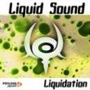 Liquid Sound - Night Ride