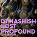 DJ Hashish - Lost