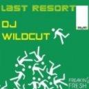DJ Wildcut - Last Resort (Djs From Mars Human Radio Edit)