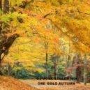 Dj Vova Beller - One Gold Autumn (Mix)
