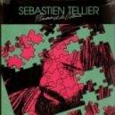 Sebastien Tellier - L'Amour et La Violence (Nico Pusch Bootleg Remix)