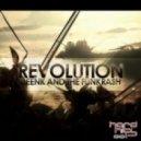 Deenk & the Funkrash - Revolution
