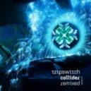 Tripswitch - Collider (Aurtas Remix)