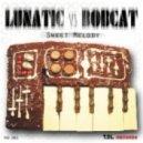 Bobcat - Lonely Way