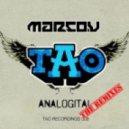 Marco V - Analogital (Bassjackers Remix)