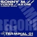 Sonny M - Voices (Original Mix)