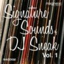 DJ Sneak - Partyin Like The 70s (Original mix)