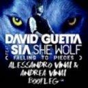 David Guetta - She Wolf (Alessandro & Andrea Vinai Mix)