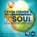Cevin Fisher -  Down In My Soul (Original Mix)