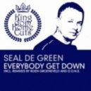 Seal De Green  -  Everybody Get Down (Seal De Green SunBeach Dub Remix)