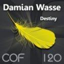 Damian Wasse - Attempt To Get (Original Mix)