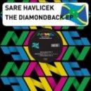 SARE HAVLICEK - Pure Sin (feat Lara Love - Diamondback Part 6)
