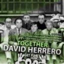 David Herrero - Together (Hollen Remix)
