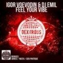 DJ Emil, Igor Voevodin - Feel Your Vibe (Original Mix)