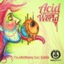 Paul Anthony - Acid Around the World (Original Mix)
