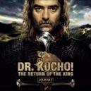 Dr. Kucho!  - Aurora Borealis (Original Mix)