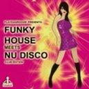 Nu Disco Bitches - Incognito (Original Mix)