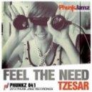 Tzesar - Feel The Need (Original Mix)