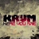 Krum - Here You Are (Sonek Remix)