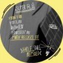 Super Flu - Jo Gurt (DJ Koze Remix)