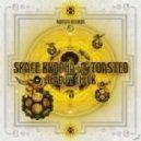 Space Buddha & Toasted - Drifter (Original Mix)