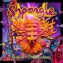 Shpongle - Juggling Molecules (Original mix)