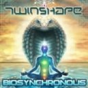 Twin Shape - Array Of Light (Original mix)