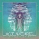 Hot Natured - Benediction (No Artificial Colours Remix)