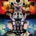 What So Not - Jaguar (Low Bass Mix 34-30Hz)