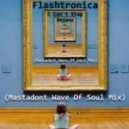 Flashtronica - I Can`t Stop Dejavu (Mastadont Wave Of Soul Mix)