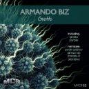 Armando Biz  -  Grotto (AlirezA DP Remix)
