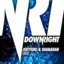 JoeySuki & Shanahan - Fiber (Original Mix)