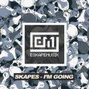 Skapes - I'm Going (Original Mix)