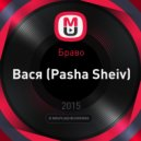 Браво - Вася (Pasha Sheiv Cover)