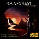 Rainforest - Dream Designers (Original mix)