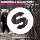 Borgeous & Shaun Frank Feat. Delaney Jane - This Could Be Love (SXR vs. Wayne & Woods Remix)