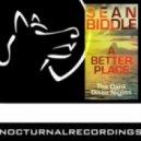 Sean Biddle - Disco Nights