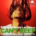 Baymont Bross Feat. Darrison - Can't Keep (stonewash Remix)
