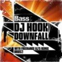 Dj Hook - Downfall (Freerange DJs Remix)