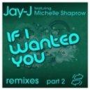 Jay-J, Michelle Shaprow - If I Wanted You (Husky\'s Random Soul Instrumental)