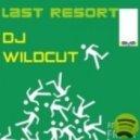 Dj Wildcut - Last Resort (DJs From Mars Alien Club Remix)