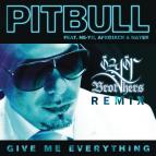 Pitbull Ft. Ne-Yo, Afrojack -  Give Me Everything  (ozgor Brothers Remix)