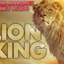 David Marquez & Andy Acedo - The Lyon King (Remix 2011)